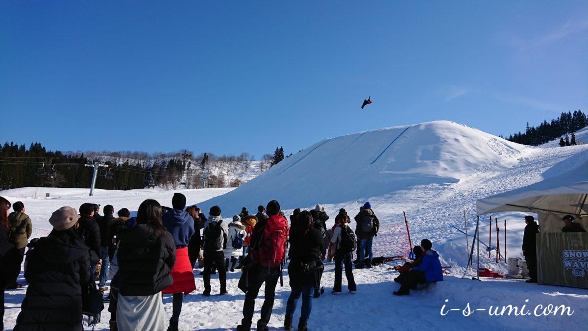 つなん雪まつり2019/SNOW WAVE