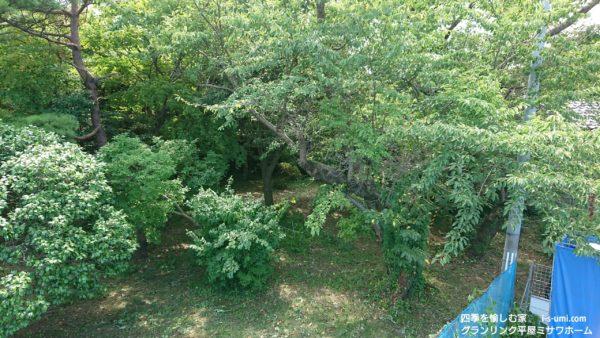 令和元年8月10日 着工から57日目の建築現場より 東の庭園