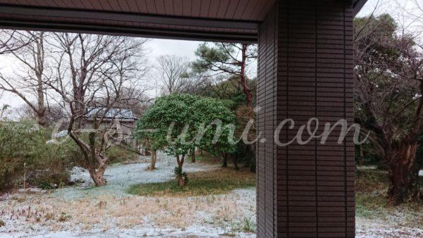 冬のリンクテラス 2020.2.4 立春