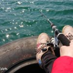 春の海釣り