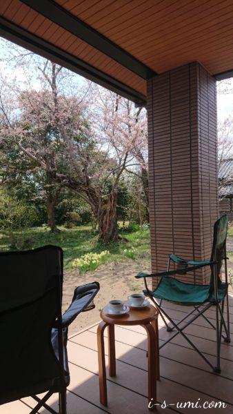 春のカフェテラス 2020.4.5