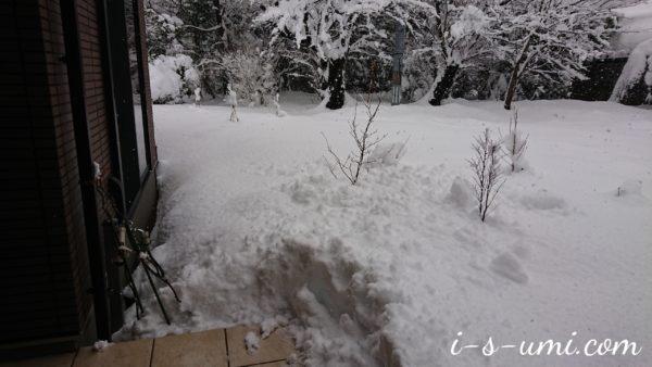 年明け寒波の雪堀り 2021.1.3