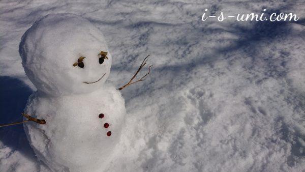 雪だるま 2021.1.6