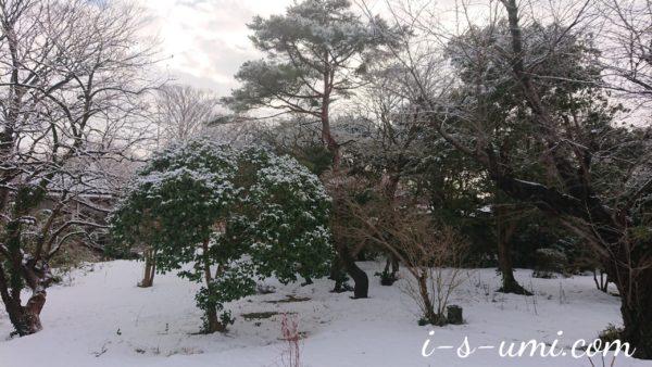 冬のリンクテラス 2021.1.6