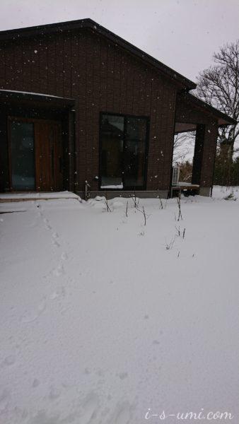 大雪警報 2021.2.18
